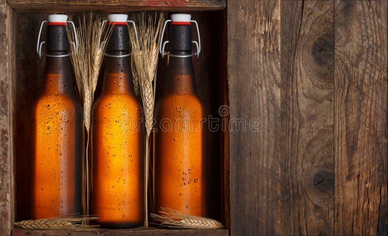 Bierflaschen in der Kiste stockbild