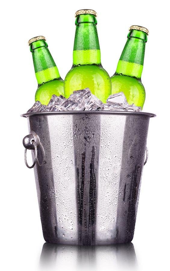 Bierflaschen im Eiseimer lokalisiert lizenzfreie stockfotografie