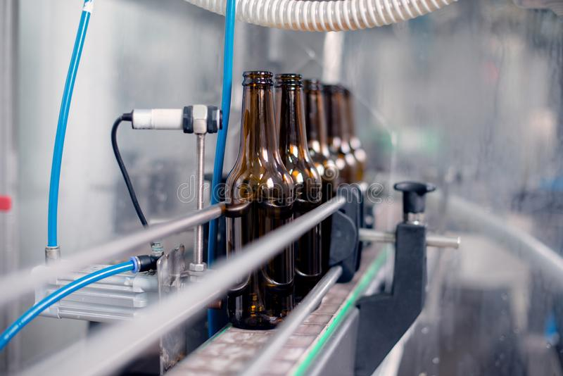 Bierflessen op een rij royalty-vrije stock afbeelding