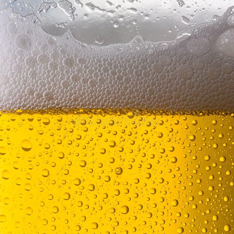 Bierglas met dauwdalingen stock foto's