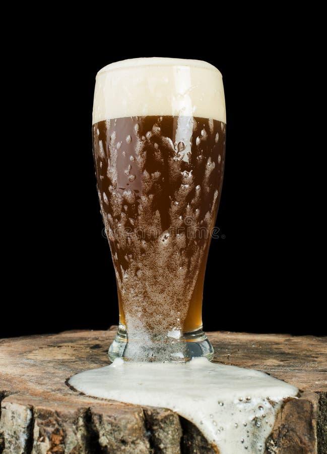 Biermok op stomp stock afbeelding