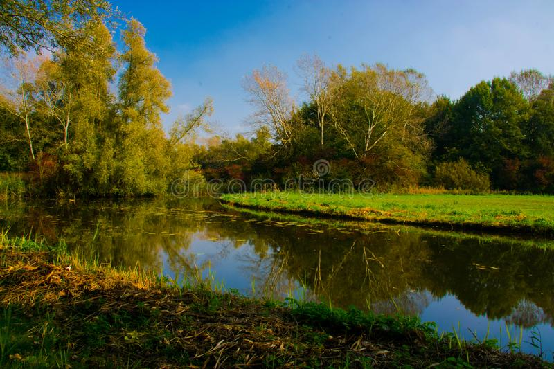 Biesbosch stock photo