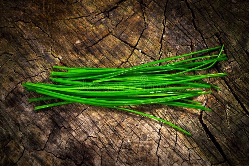 Bieslook (Alliumschoenoprasum) stock foto