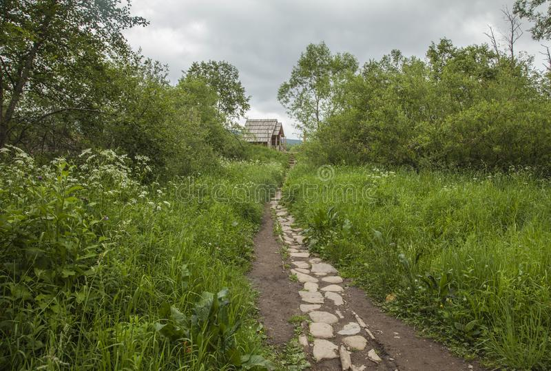 Bieszczady山看法,波兰,欧洲东部-道路和一些绿叶 库存照片