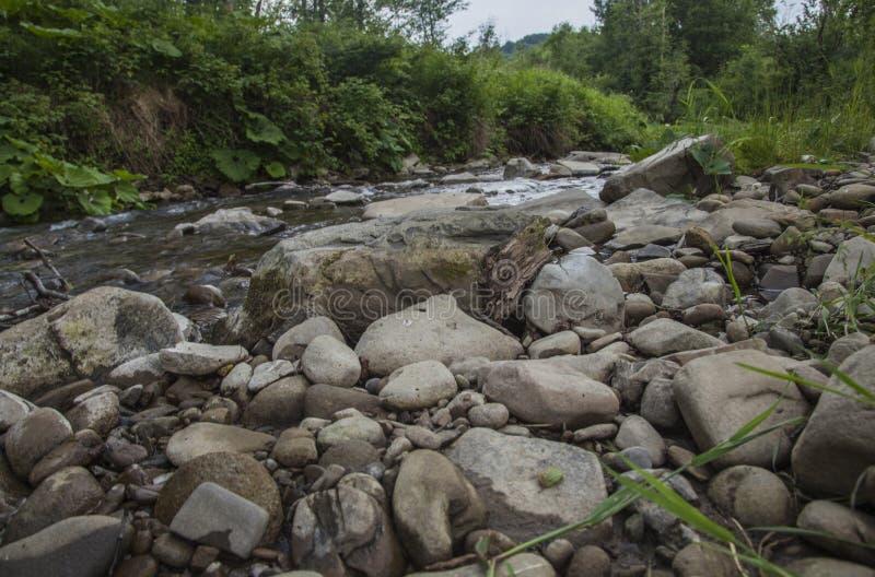 Bieszczady山看法,波兰,欧洲-小河和有些石头 免版税库存照片