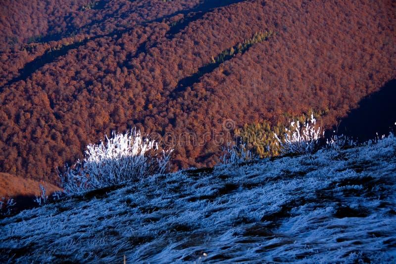 Bieszczady, montagne, montagnes de loup, photo libre de droits