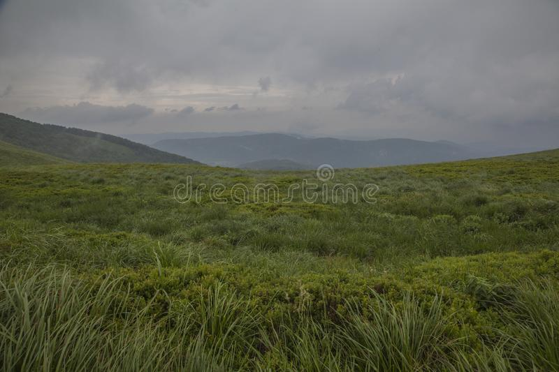 Bieszczady Mountains, south Poland, Europe - juicy green grass and dark blue skies. This image shows a view of hills, green meadows and cloudy skies in stock photography