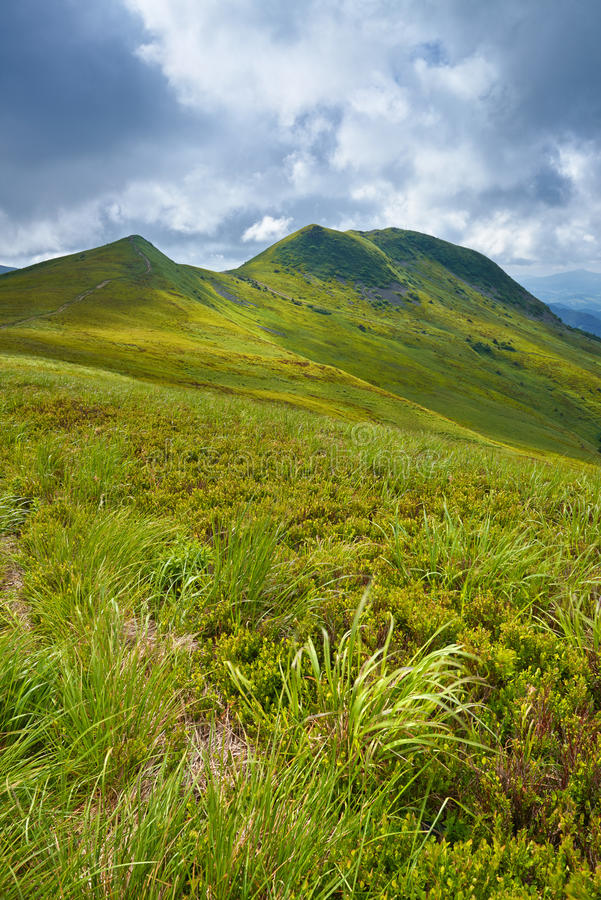 Bieszczady park narodowy Karpackich gór trawy krajobraz fotografia stock