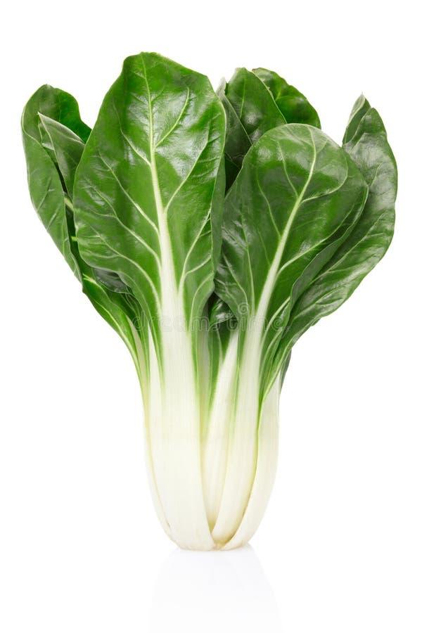 Download Biet of Bèta vulgaris stock foto. Afbeelding bestaande uit cuisine - 29509624