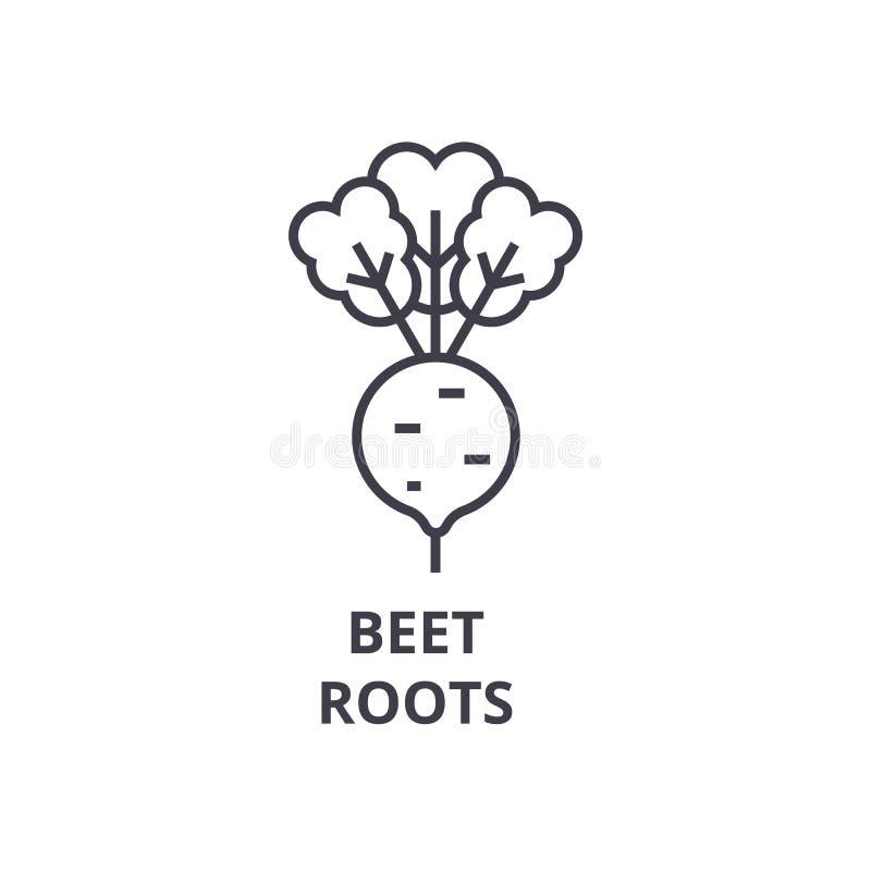 Biet, het pictogram van de wortelslijn, overzichtsteken, lineair symbool, vector, vlakke illustratie stock illustratie