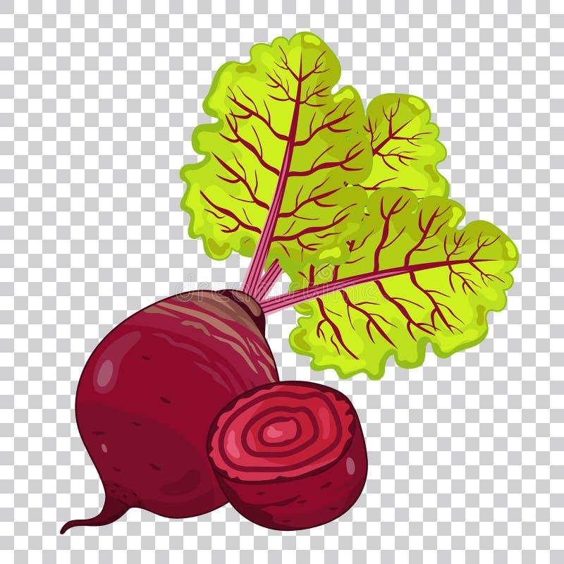 Biet, natuurvoeding, landbouwbedrijfvoedsel stock illustratie