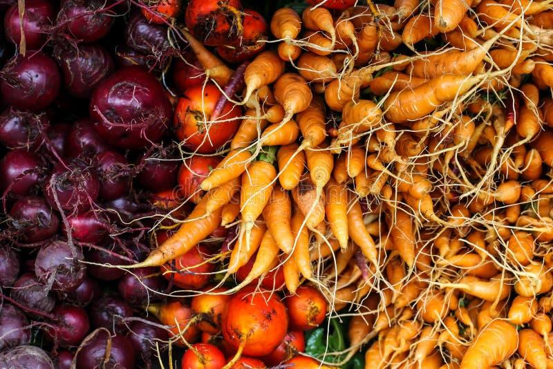 Bietole rosse e carote fresche fotografia stock