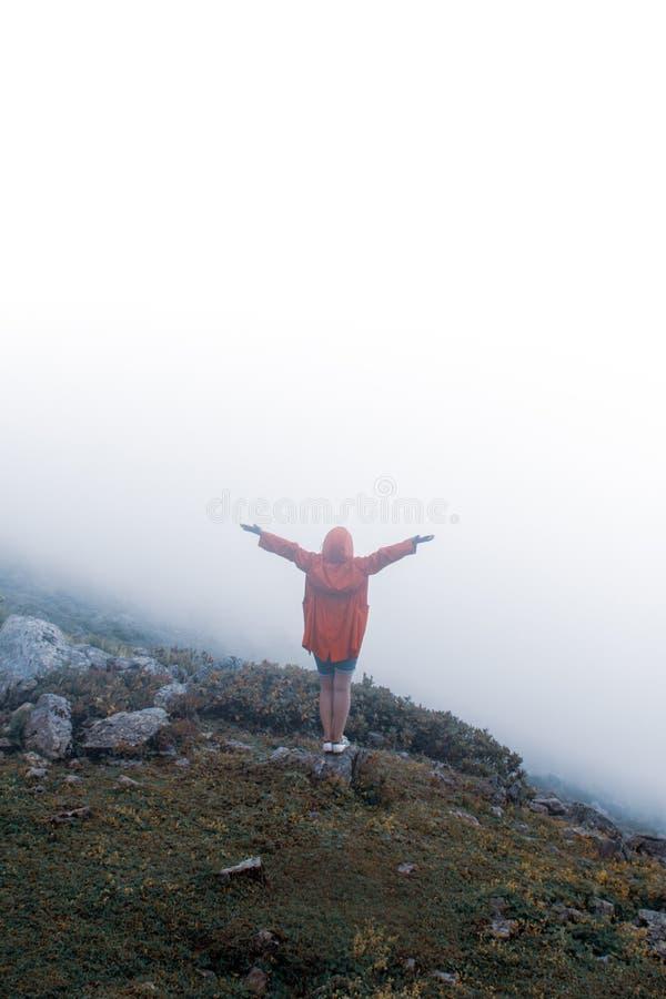 Bifallkvinnan tycker om den härliga sikten på bergmaximumet arkivbilder
