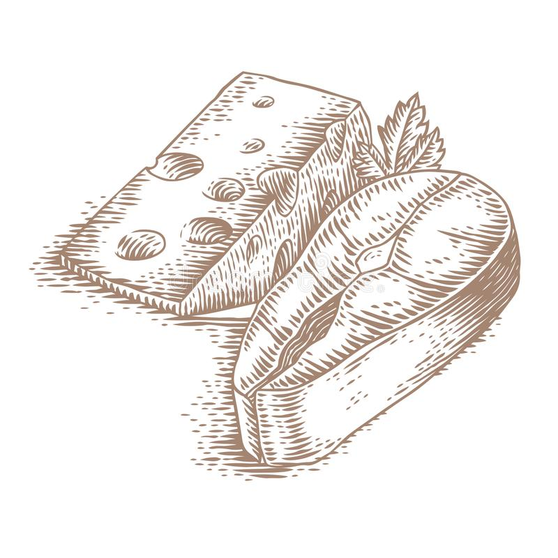 Bife dos salmões e do queijo ilustração stock
