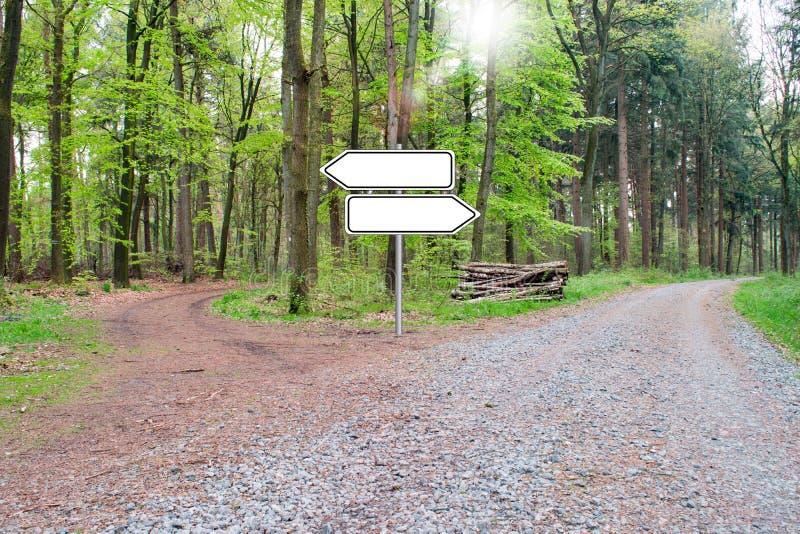 Biforcazione di un sentiero per pedoni nel legno - scelga il vostro modo Segno vuoto immagine stock libera da diritti