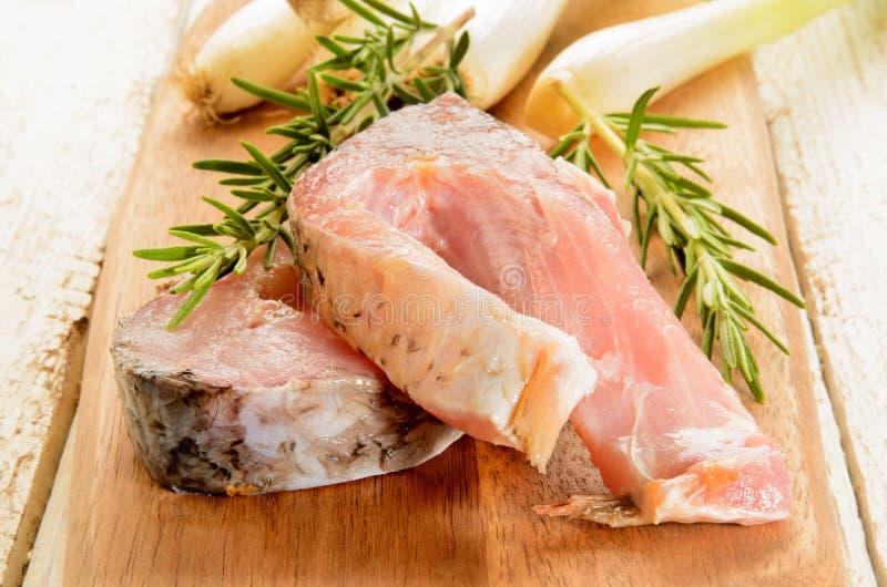 Bifteck cru de carpe aux oignons de romarin et de ressort image libre de droits