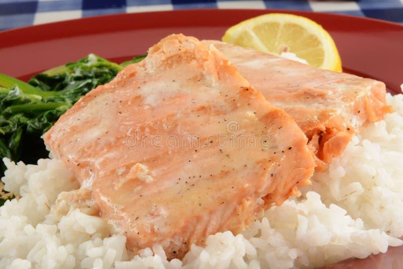 Biftecks saumonés grillés images stock