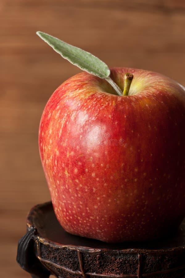 Big apple. stock photos
