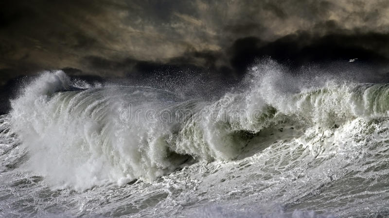 Download Big Atantic wave stock photo. Image of hurricane, danger - 36496322