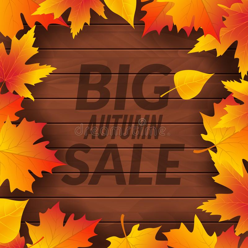 Big autumn sale design template poster. Fall promotional flyer. Autumn Discounts offers design with leaves on wooden background.  royalty free illustration