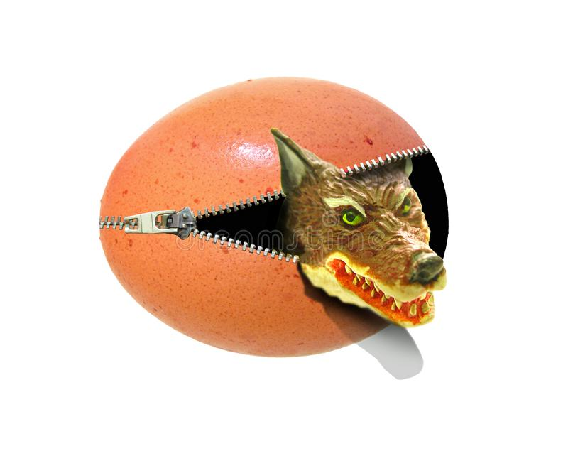 Big bad wolf surprise attack emerging from unzipped egg vector illustration