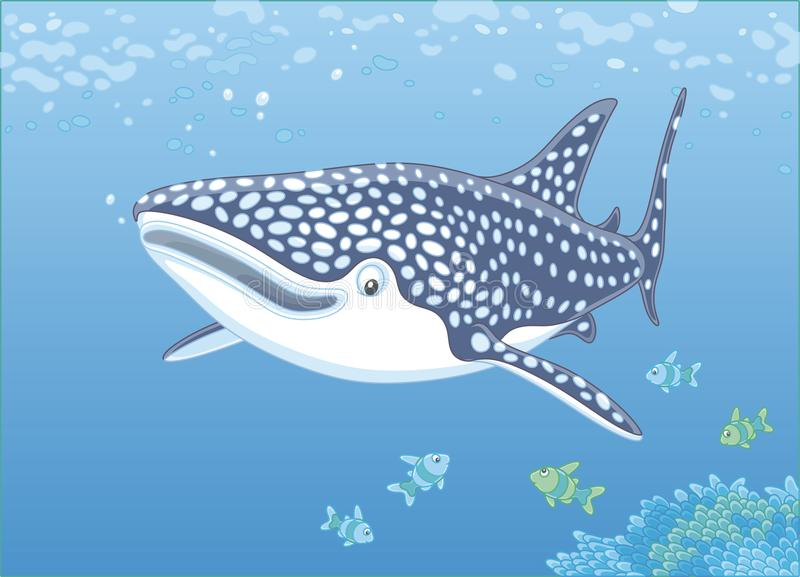 Whale shark over a reef stock illustration