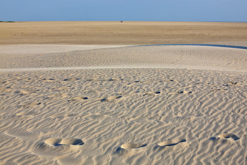 Download The big beach stock image. Image of peter, sand, summer - 26613127
