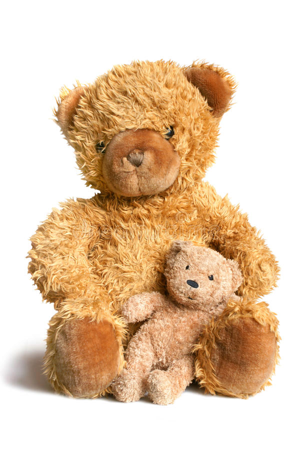 Big bear with bear cub. Isolated on the white background royalty free stock photo