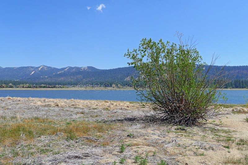 Big Bear Lake stock photography