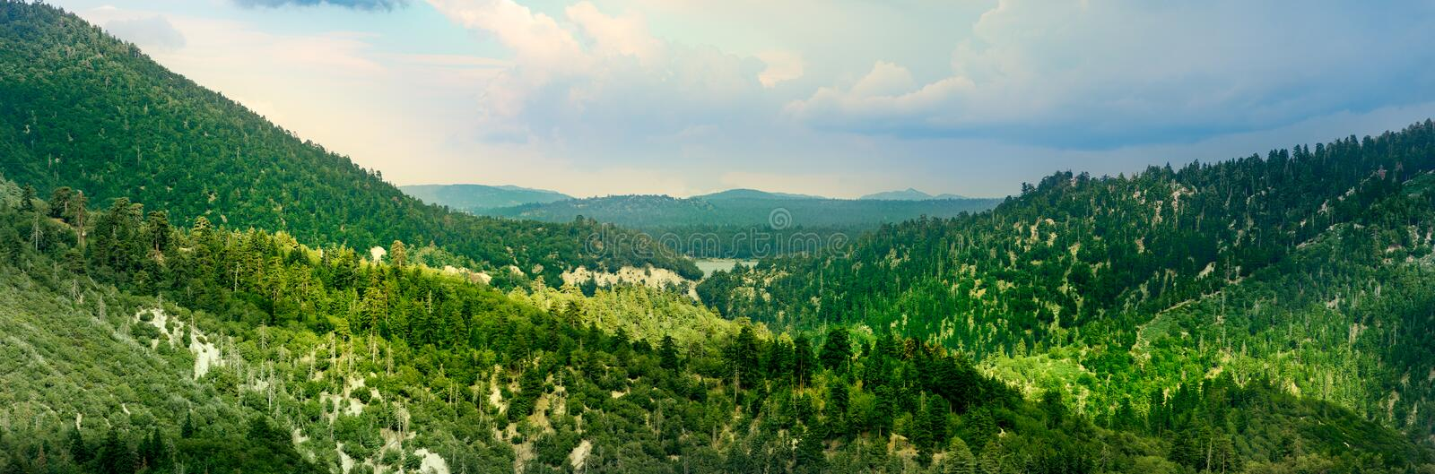 Big Bear Lake view from the mountain. A panoramic view towards Big Bear lake. This Mountain top is covered with trees royalty free stock photo