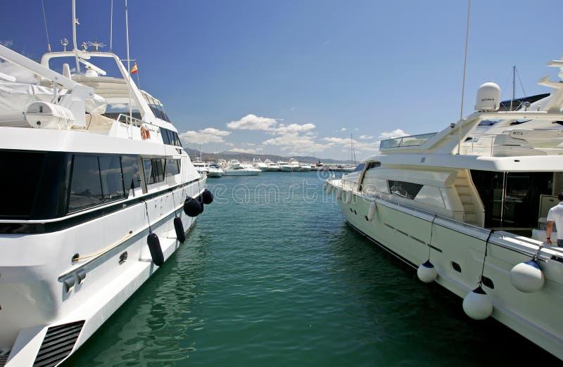 Big, beautiful, stunning and luxurious white yachts stock image