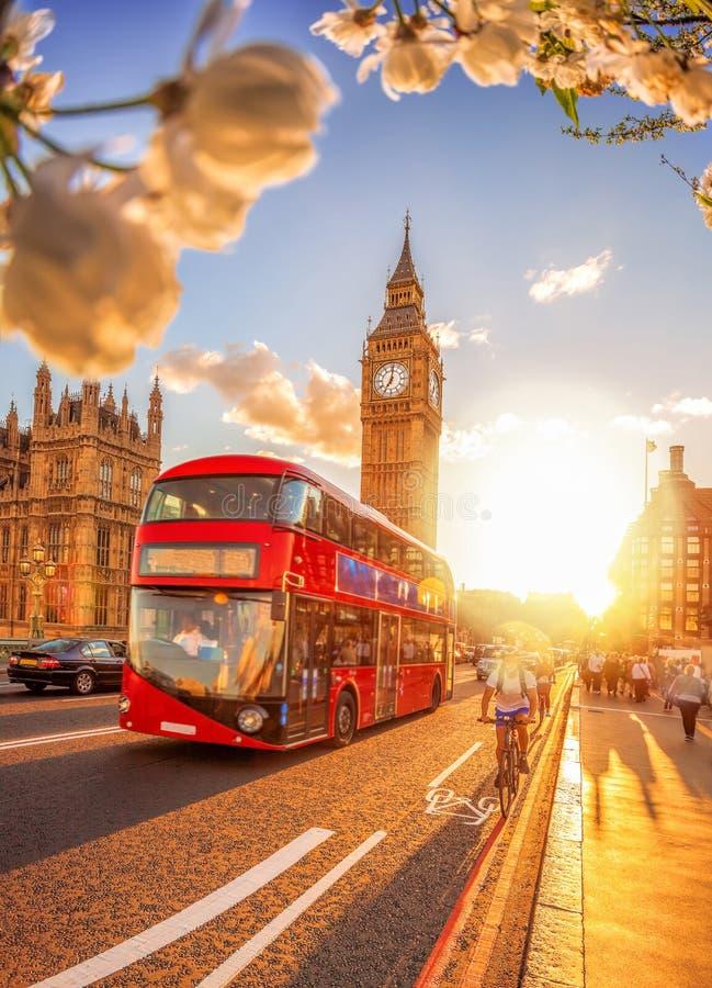 Big Ben con il tramonto variopinto ed il bus durante il tempo di molla a Londra, Inghilterra, Regno Unito fotografia stock