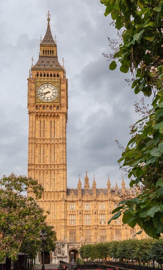 Big Ben i London fotografering för bildbyråer