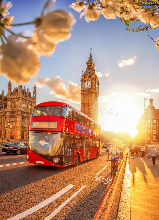 Big Ben med färgrik solnedgång och bussen under vårtid i London, England, UK arkivbild