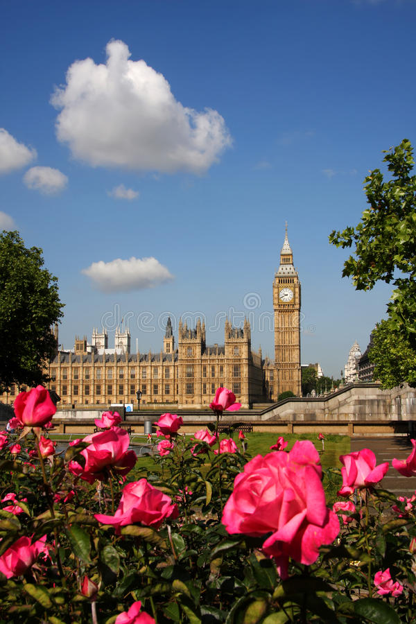 Big Ben with roses, London, UK