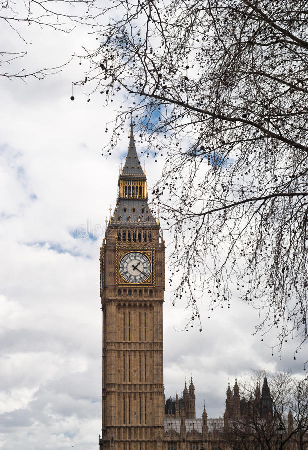 Download Big Ben With Tree In London Stock Image - Image of city, large: 34821511