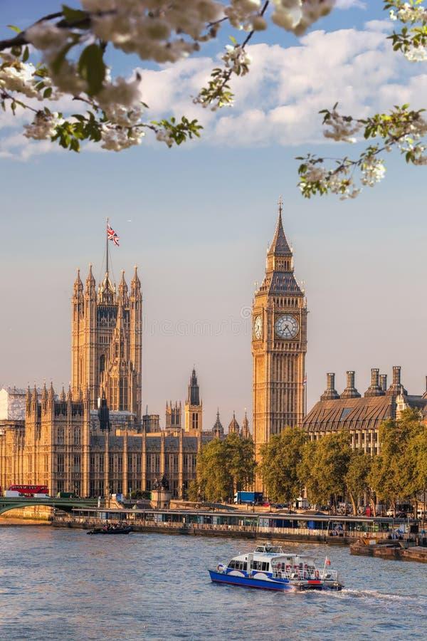 Big Ben z łodzią podczas wiosna czasu w Londyn, Anglia, UK obrazy stock