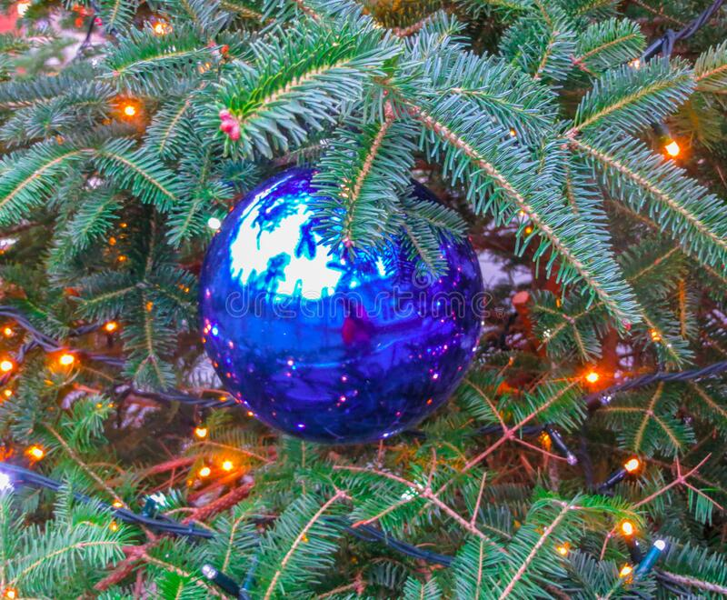 Big blu ball on a Christmas tree in the park.  royalty free stock photos