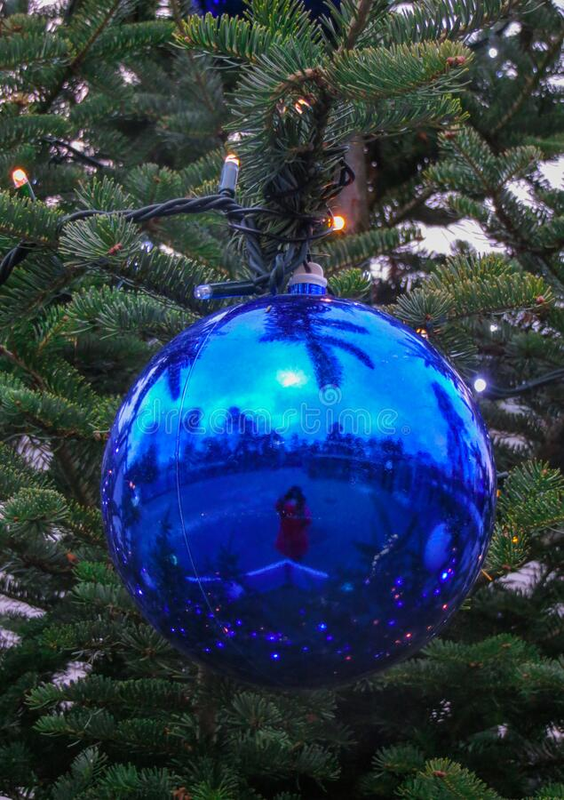 Big blu ball on a Christmas tree in the park.  royalty free stock photo
