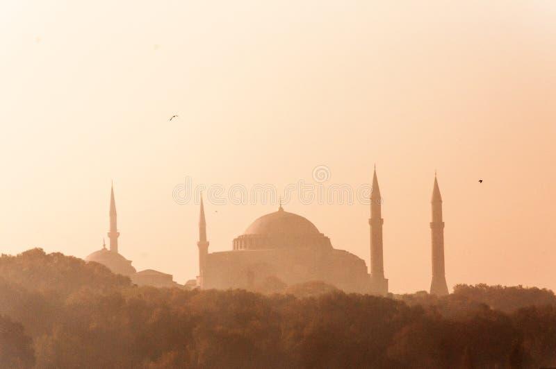Big Blue meczet w Istanbuł Turcja w ranku świetle obraz royalty free