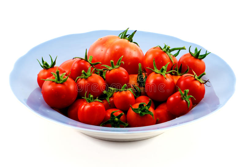 Big blue plate with red tomatoes isolated royalty free stock photo