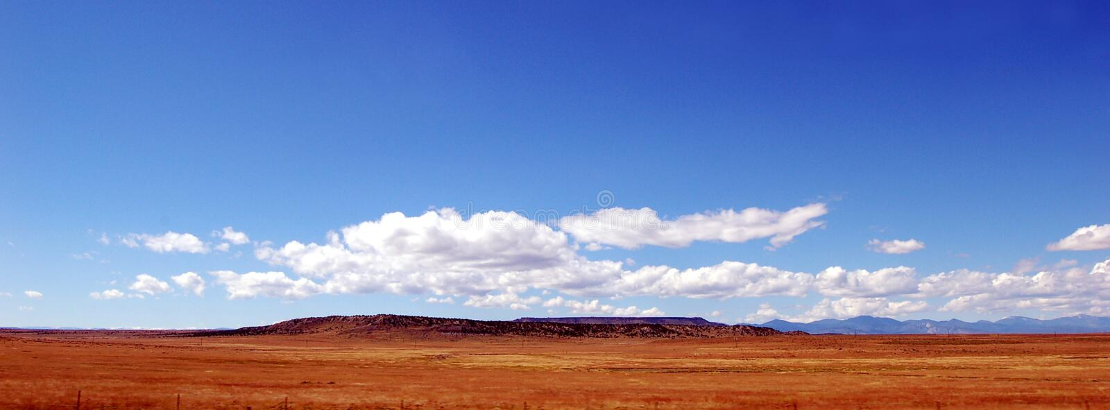 Big Blue Sky Golden Prairie. Colorado prairie with a mesa on the horizon under a blue sky and floating white clouds royalty free stock images