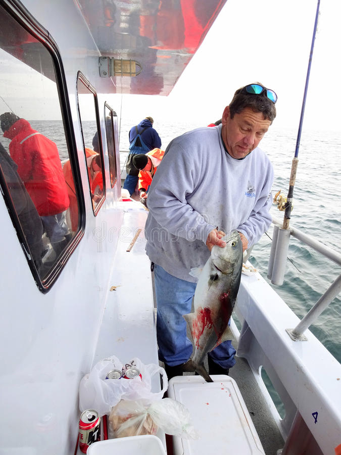 Big Bluefish Caught in December. Photo of angler with a big bluefish he caught on a headboat off the coast of ocean city maryland during december on 12/5/14. The stock photography