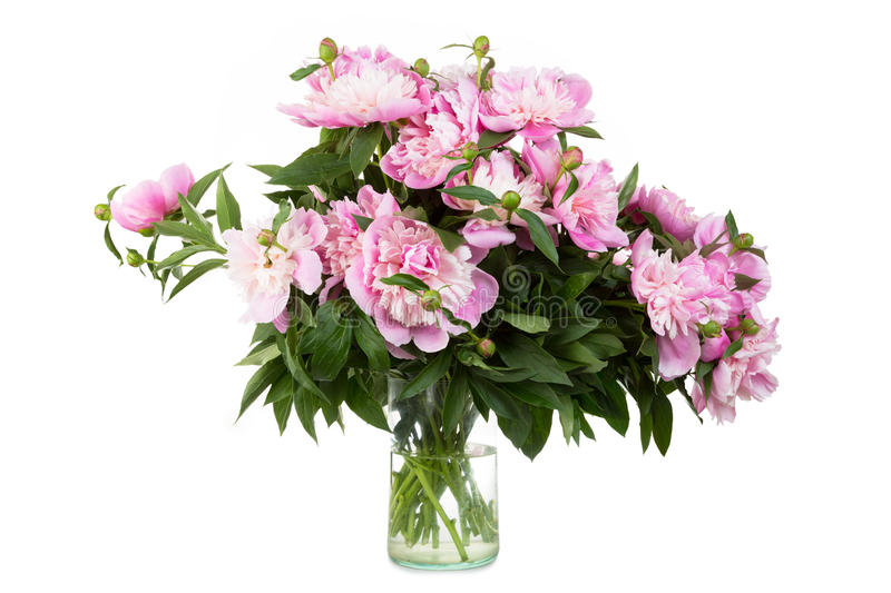 Big bouquet of pink peonies royalty free stock photos