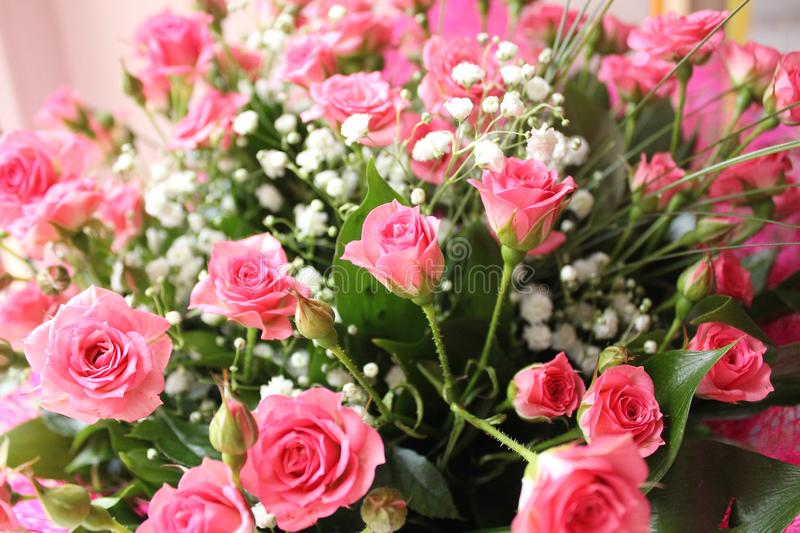 Big bouquet of pink roses. The big beautiful bouquet of small pink roses for closer stock image