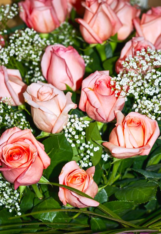 Big bouquet of pink roses. Close up stock images