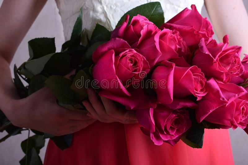 Big bouquet of pink roses held by a young woman. Wearing a dress royalty free stock photography