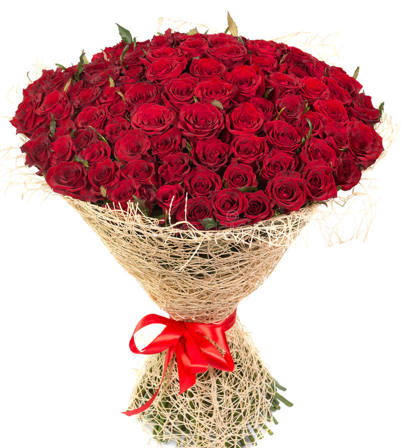 Big bouquet of red roses. Isolated on white background stock photo