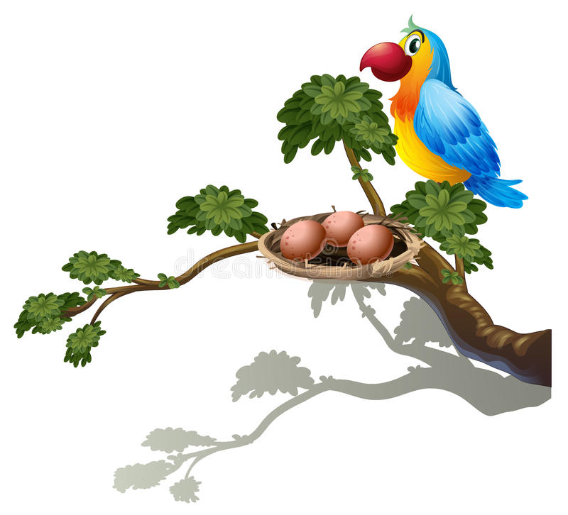 A big branch of a tree with a nest and a bird royalty free illustration