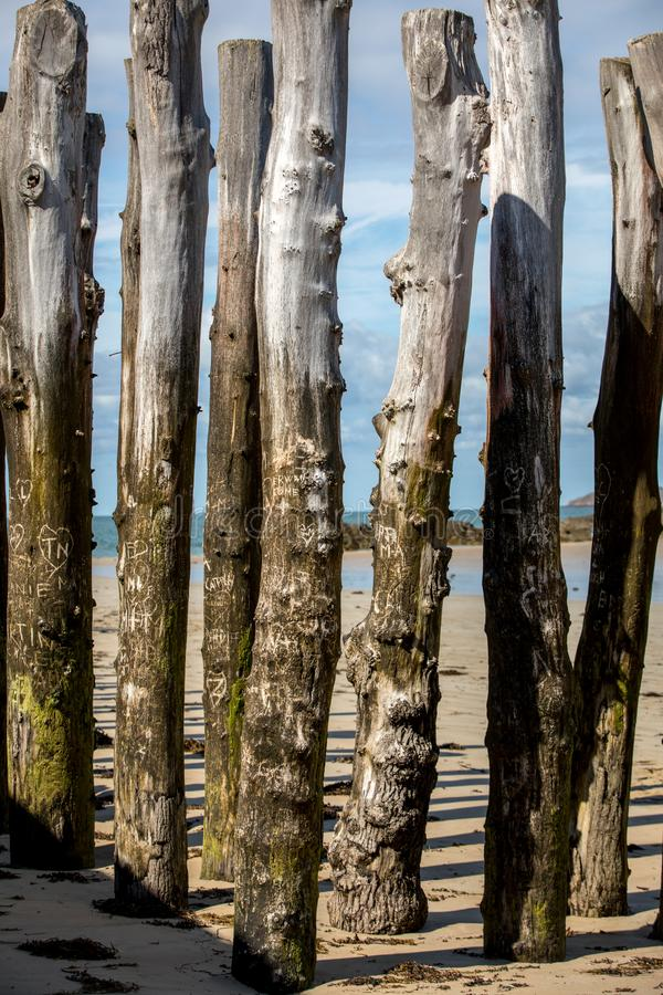 Big breakwater, 3000 trunks to defend the city from the tides, Plage de l`Éventail beach in Saint-Malo, Ille-et-Vilaine,. Brittany stock photos